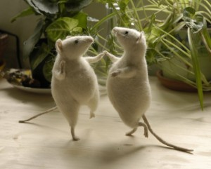 mice-can-dance-dancing-little-animals-28662996-700-565-615x496